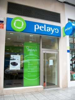 Mutua de seguros pelayo cristina solares dom nguez for Oficinas de pelayo en barcelona